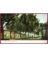 NORFOLK VIRGINIA Lafayette Park Geese VA - $6.00