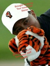 Nike Frank Tiger Woods Hat Cap Nike Limited Edition TW In Hand! - $54.00