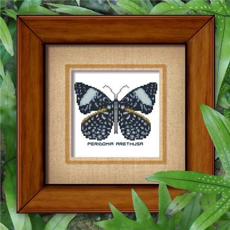 9000 butterfly 808