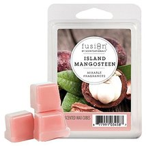 Fusion by ScentSationals Wax Cube Island Mangosteen, 2 oz. - $6.92