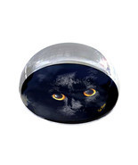"Shadow Cat Illustration Art Gift 2"" Crystal Dome Magnet or Paperweight - $15.99"