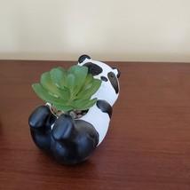 Animal Planters with Faux Succulent, Panda Sloth, Cement Pot Artificial Plant image 5