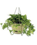 Hanging Planter Pot Shelf Watering Flower Basket Outdoor Home Indoor Gar... - ₨3,234.17 INR