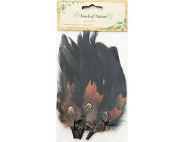 Midwest Design Touch of Nature Feather Picks #TON4-3PC-0509