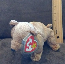 Ty Beanie Baby Babies Pecan Bears Plush Stuffed Retired Toy Adorable 1999 - $4.99
