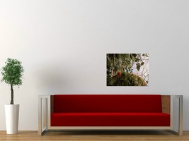 6 red in red sofa white wall thumb200
