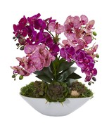 """20"""" Phalaenopsis Orchid and Succulent Artificial Arrangement in White Vase - $154.99"""