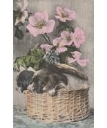 Vintage Postcard Basset Hound Puppies in a Basket Pink Flowers 1910 Dog ... - $9.89