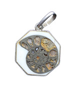 Vintage Sterling Silver Fossil Ammonites Jurassic Period Imitation Pendant - £29.70 GBP