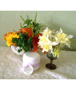 Tallow Plum Kernel Oil Squalane CoQ10 Honey Acne Rosacea Eczema Psoriasi... - $12.99