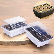 Seed Germination Box with Dome Kit - $3.10