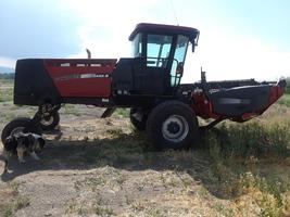 2004 Case IH WDX 1002 S For Sale in Alomosa, Colorado 81101 image 2