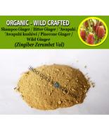 POWDER Shampoo Ginger Bitter Pinecone Ginger Wild Ginger Zingiber Zerumbet - $16.40+