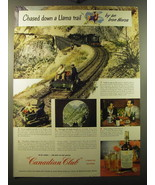 1950 Canadian Club Whisky Ad - Chased down a Llama trail by an iron horse - $14.99