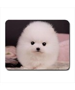 Teacup Pomeranian Puppy Mousepad - Dog Canine - $7.71