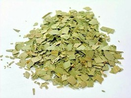 Quality Dried Senna Leaves Fabaceae Tea Natural Laxative Herb Spices  - $14.99