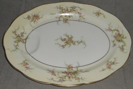 "Theodore Haviland Rosalinde Pattern 13 7/8"" Oval Indented Well Platter New York - $49.49"