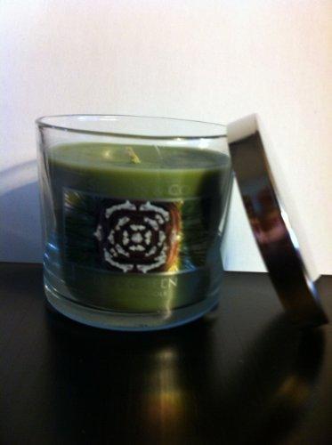 Bath & Body Works Slatkin & Co. Evergreen Scented Candle 4 oz / 113 g