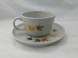 Franciscan Discovery Interpace Indian Summer Cup and Saucer Set - $11.66