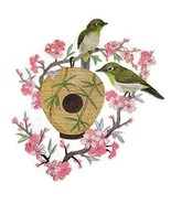 Nature Weaved in Threads, Amazing Birds Kingdom Nest Japanese White-Eye ... - $27.71