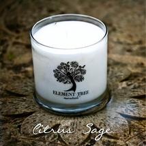 Citrus Sage Lotion/Massage Candle - 11 oz - $26.99