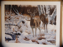 "Ltd. Signed Edition Print by Jerry Gadamus for Ducks Unlimited, "" Waters... - $89.00"