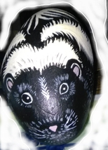 Skunk - Painted Rock