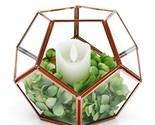 Rose Gold Geometric Terrarium Glass Planter Box Modern Round Flower Pot Window