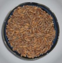 SHIP FROM US 4 Ounces Seeds Organic Spelt Grain,DIY Plant Seeds RM - $16.99