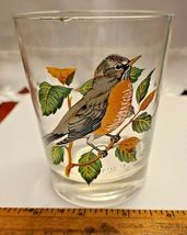 VINTAGE HAND PAINTED ROBIN OLD FASHION GLASS West Virginia Glass Spec. image 3