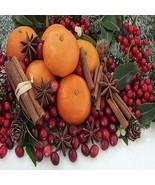 CHRISTMAS SPLENDOR FRAGRANCE OIL - 4 OZ - FOR CANDLE & SOAP MAKING BY VI... - $9.22
