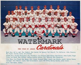 MLB 1964 St. Louis Cardinals World Series Champions Team Pic Color 8 X 1... - $8.99