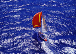 Art print POSTER/Canvas Aerial View of Sailboat - $3.95+