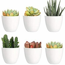Youngever 10 Pack 3 Inch Mini Plastic Planters Indoor Flower Plant Pots,... - £11.63 GBP