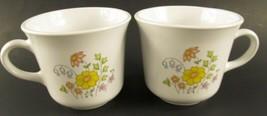 Corelle Spring MEADOW Vintage Set of 2 Coffee Cup Mugs - $4.99