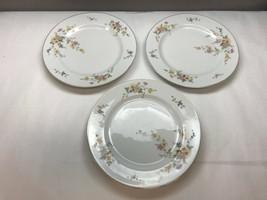 Vtg HEINRICH Selb BAVARIA Set of THREE Dinner PLATES Pattern #9847 Flora... - $23.84