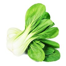Cabbage Pak Cho/Bok Choy Non GMO Heirloom Asian Vegetable 1000 Seeds Sow No GMO  - $5.71