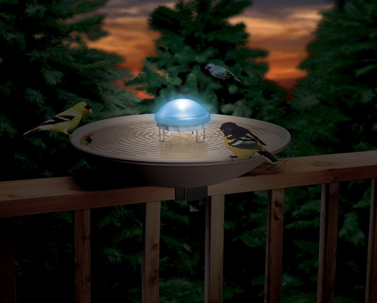 Allied Precision Aurora Water Wiggler Bird Bath Agitator with Color Changing Lig