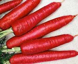 100 Packet Seeds of Atomic Red Carrots - $16.83