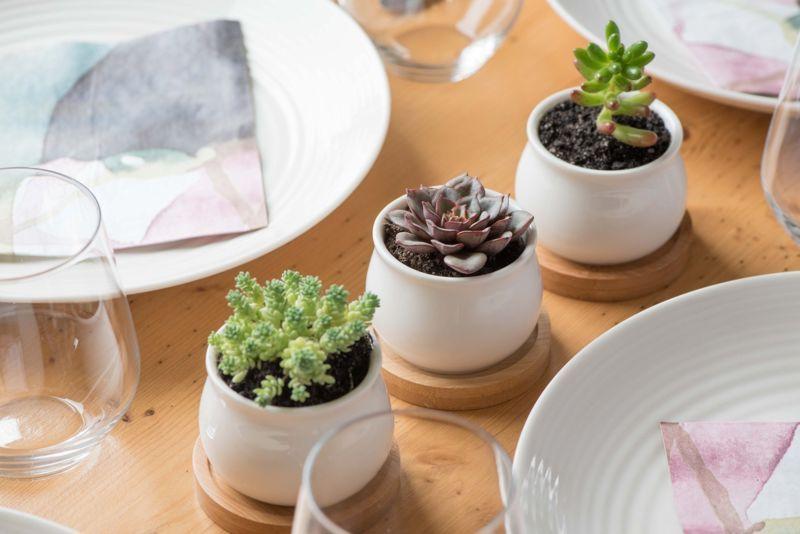 Mini Ceramic Planter Pots Set 3-Packs Indoor Outdoor Garden Flower Cactus Bowls
