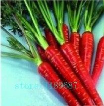 BEST PRICE 500 Seeds Sweet Carrot plants,FS DIY Vegetable Seeds - $6.90