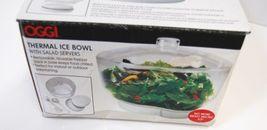 Oggi 5522 Thermal Bowl Color Clear Salad Servers Removable Freezer Pack image 4
