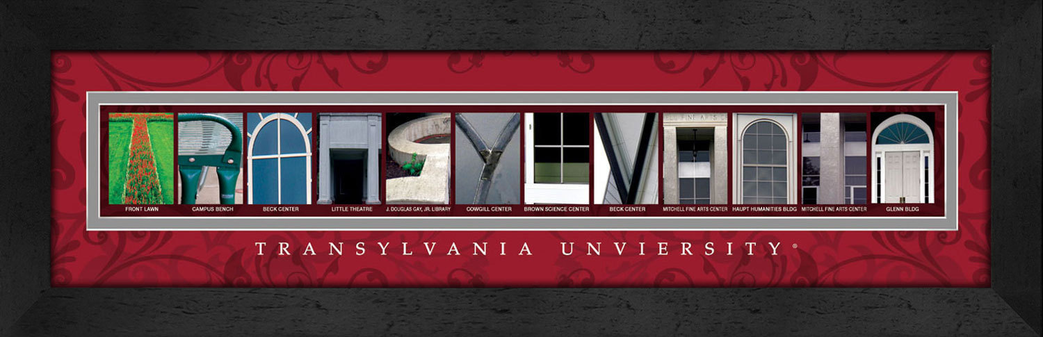 Primary image for Transylvania University Officially Licensed Framed Campus Letter Art