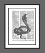 Cobra Spectacled Cobra Snake Dictionary Art Print Reptile nature005 - $10.99