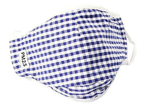 Classical Lattice Masks PM2.5 Anti-smog Antibacterial Carbon Mask- 06