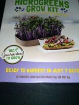 Back To The Roots Organic Microgreens Grow Kit ~ Rainbow Mix  New (1 kit per box image 2