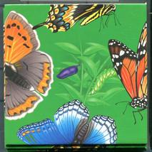 B Dazzle Butterflies Scramble Squares Brain Twister Puzzle  - $14.84