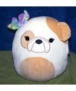"Squishmallows Davitta the Bulldog 10""H New - $27.50"