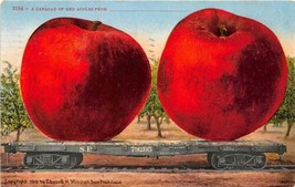Exaggerated Red Apples SP Railroad Car Exaggeration 1910 postcard - $6.93
