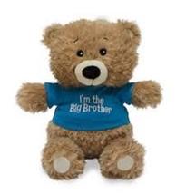 """Cuddle Barn - Big Brother  Bear """"Precious Big Sister Encouragements"""" - $16.82"""